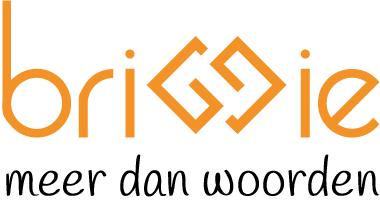 briggie Logo
